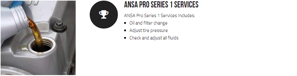 Ansa Pro Series 1 Services