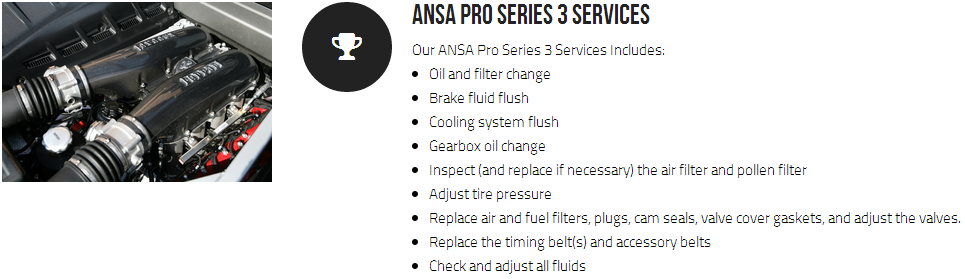 Ansa Pro Series 3 Services